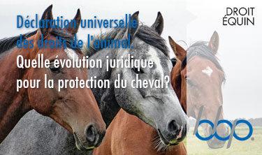 La Déclaration universelle des droits de l'animal. Quelle évolution juridique pour la protection du cheval?