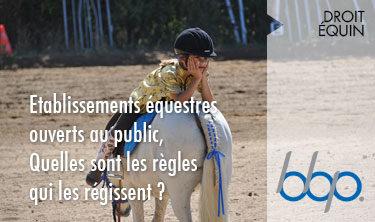 Etablissements équestres ouverts au public... Quelles sont les règles qui les régissent?