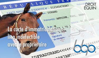La carte d'immatriculation: lien indéfectible avec le propriétaire